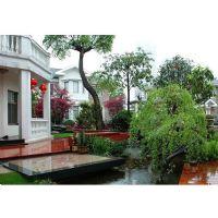 私家别墅庭院绿化景观设计施工现场照片